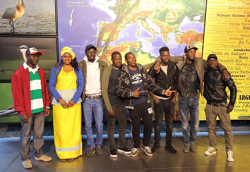 Senegaldarrak